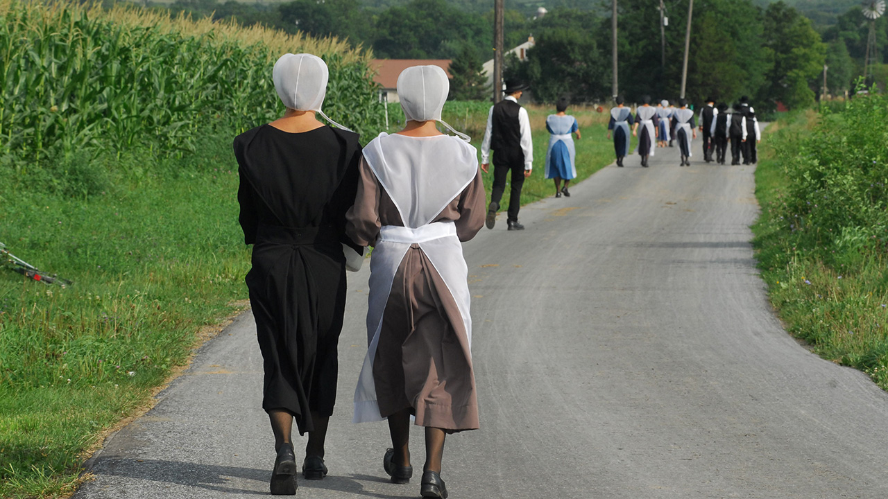 Lancaster County Amish walk to church on a Sunday morning. — Dale D. Gehman for Anabaptist World